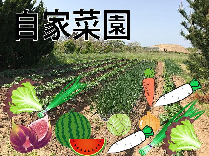 能登半島志賀町の月見草苑は自家菜園があります